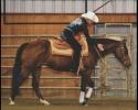 reining-picture-lauren-1