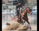 reining-picture-lauren-2