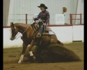 reining-picture-mahala